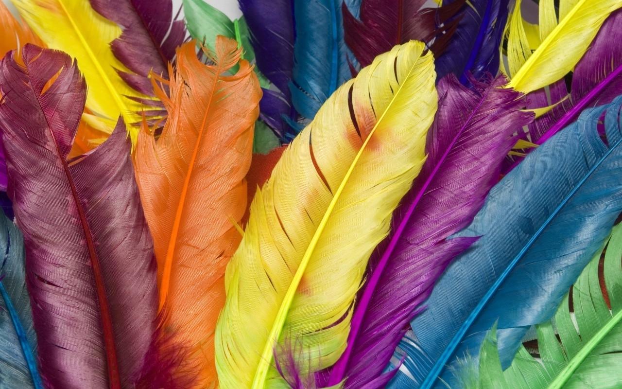 Rainbow-bright-colors-18591253-1280-800
