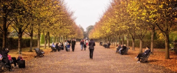 london-park-fall-940x626-1